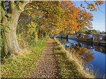 SP1671 : Moorings, Stratford-upon-Avon Canal by David P Howard