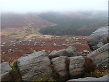 SK2681 : Rocks, heather and forest by Andrew Hill