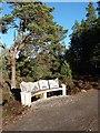 NH9818 : A bench seat at Loch Garten RSPB Reserve by Walter Baxter