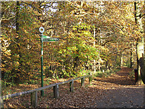TQ4475 : Signpost in Eltham Park North by Stephen Craven