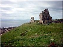 NO5101 : Remains of  Newark Castle by John Sparshatt