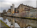 SJ8598 : Ashton Canal, MG Gas Products by David Dixon