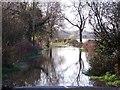 SK3228 : Flooded Road into Twyford by Ian Calderwood