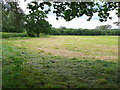 SP1158 : Recently Mown  Hay Field by Nigel Mykura