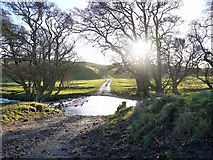 NU0122 : Ford on the old road to Wooler by Andrew Curtis