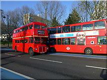 TQ2977 : London Routemaster Bus 24 in Grosvenor Road Pimlico by PAUL FARMER