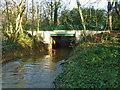 TQ2491 : Footbridge over Dollis Brook by Robin Webster
