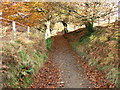 ST1890 : Track above Sirhowy Valley Country Park by John Light