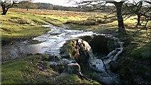 SK2579 : Wide bridge, narrow stream by Chris Morgan