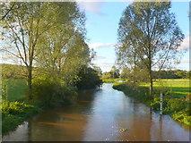 ST9102 : River Stour by Nigel Mykura