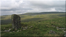 NY7719 : Standing stone on Tinside Rigg by Trevor Littlewood