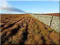 SE0568 : Dry Stone Wall below Goody Stones Moss by Chris Heaton