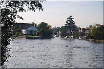 TQ1667 : Thames Ditton Island by N Chadwick