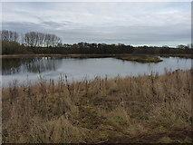 SO6892 : Pool in fields near Underton by Richard Law