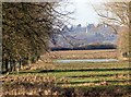 SP2556 : View west from terrace, Charlecote Park by David P Howard