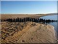 NT6480 : Coastal East Lothian : Shipwreck On Tyne Sands by Richard West