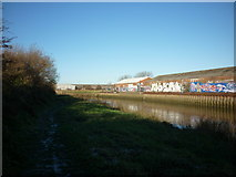 TA1031 : The riverside path along the River Hull by Ian S