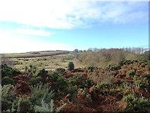 NZ2449 : View west across Waldridge Fell by Robert Graham