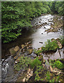 NY6392 : River North Tyne from Butteryhaugh Bridge by Trevor Littlewood
