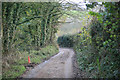 SX1755 : Muddy Cornish lane Talvan by roger geach