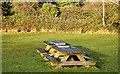 J4482 : Picnic table, Helen's Bay by Albert Bridge