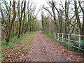 ST1286 : Celtic Trail/Taff Trail looking south towards Nantgarw by John Light