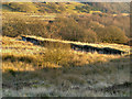 SD7616 : Holcombe Moor Firing Ranges by David Dixon