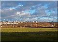 NZ2457 : Field, Lamesley by wfmillar