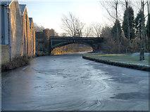 SJ9398 : Frozen Canal by David Dixon