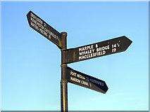 SJ9398 : Which Way? by David Dixon