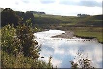 SE0063 : River Wharfe near Grassington by John Sparshatt