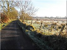 H5374 : Heading north-east along Cloghan Road by Kenneth  Allen