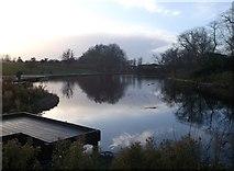 TQ4585 : The Lake, Barking Park by David Anstiss