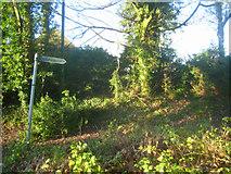 SU5646 : Metal footpath sign by Sandy B
