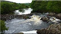 NY8928 : River Tees by Richard Cooke
