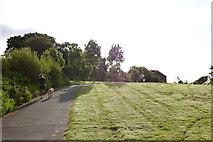 O1824 : Morning run in Belermine by Sarah777