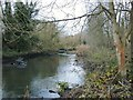 TQ1372 : The River Crane in December by Stefan Czapski