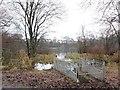 NS5472 : Kilmardinny Loch by David Robertson