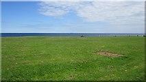 NZ3573 : Whitley Links by Richard Webb