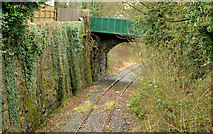 J1586 : Disused railway, Antrim (2) by Albert Bridge