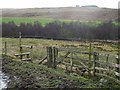 NY8780 : Diverted footpath at Wood Cottage by Oliver Dixon