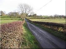 H5070 : Dryarch Road by Kenneth  Allen
