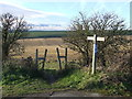 TQ2609 : Path on the South Downs near Hove by Malc McDonald