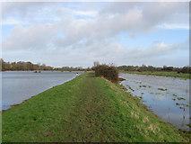 TQ5203 : Embankment, Cuckmere River by Simon Carey