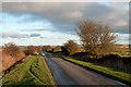 NZ1045 : Butsfield Lane by Trevor Littlewood