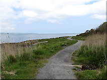 J4482 : The North Down Coastal Path south-west of Grey Point by Eric Jones