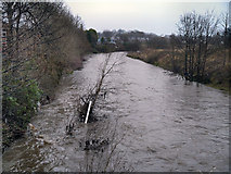 SD7909 : River Irwell, downstream from Warth Bridge by David Dixon
