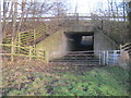 NZ4023 : A177 underpass for footpath between Thorpe Thewles and Wynyard Woodland Park by peter robinson