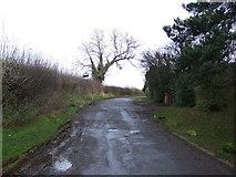 NZ4310 : Red Hall Lane, Kirklevington by JThomas