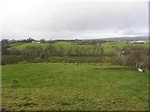 H5371 : Bracky Townland by Kenneth  Allen